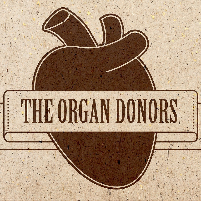The Organ Donors live at Seven Grand