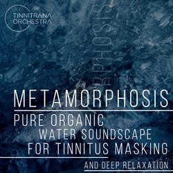 Tinnitrana Orchestra - Metamorphosis