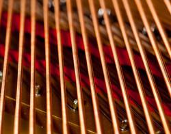 Tinnitrana Orchestra - Strings