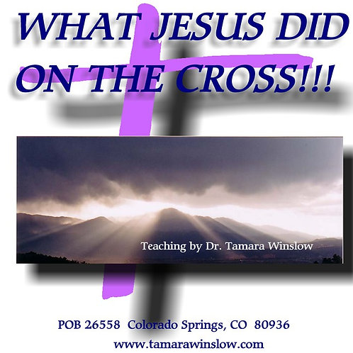 What Jesus Did on The Cross