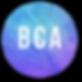 SEMINAR ICONS_BCA.png
