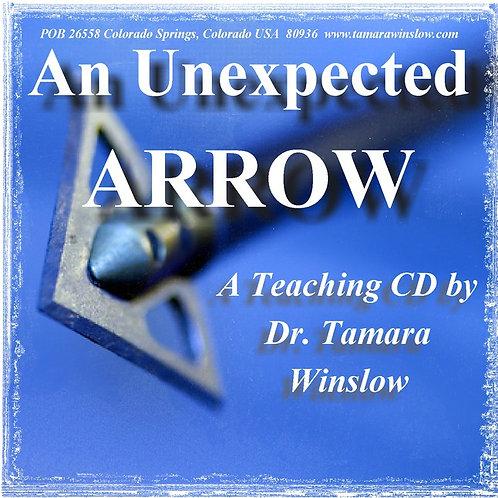 An unexpected arrow | MP3