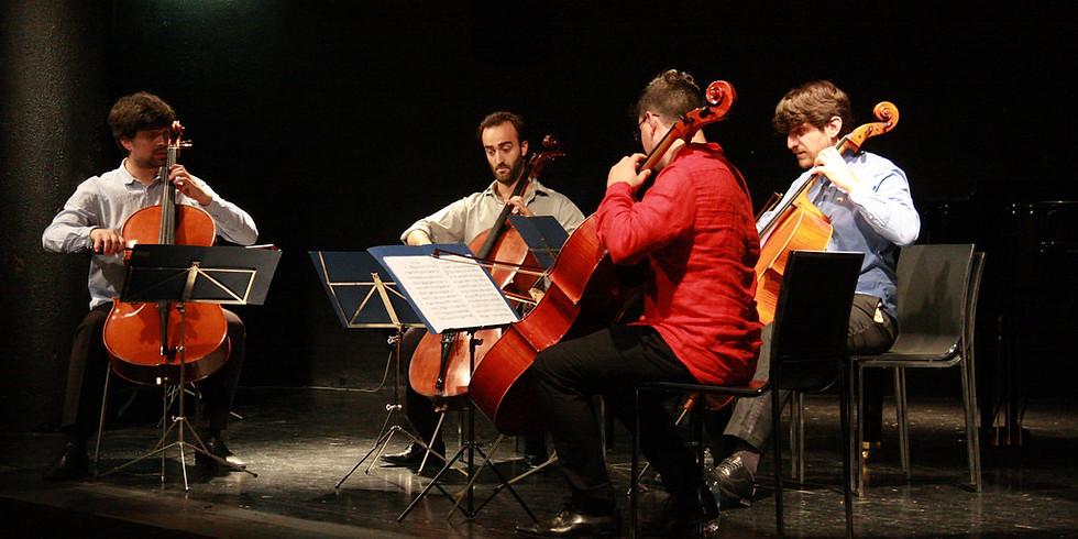 """""""Giornata del Violoncello"""" M.c.F in Concerto al MaMu"""