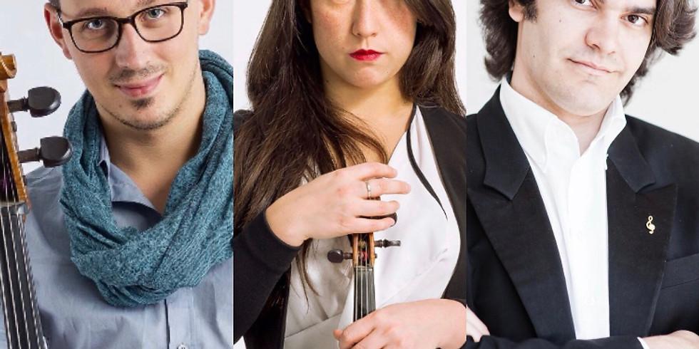 Trio Concerto