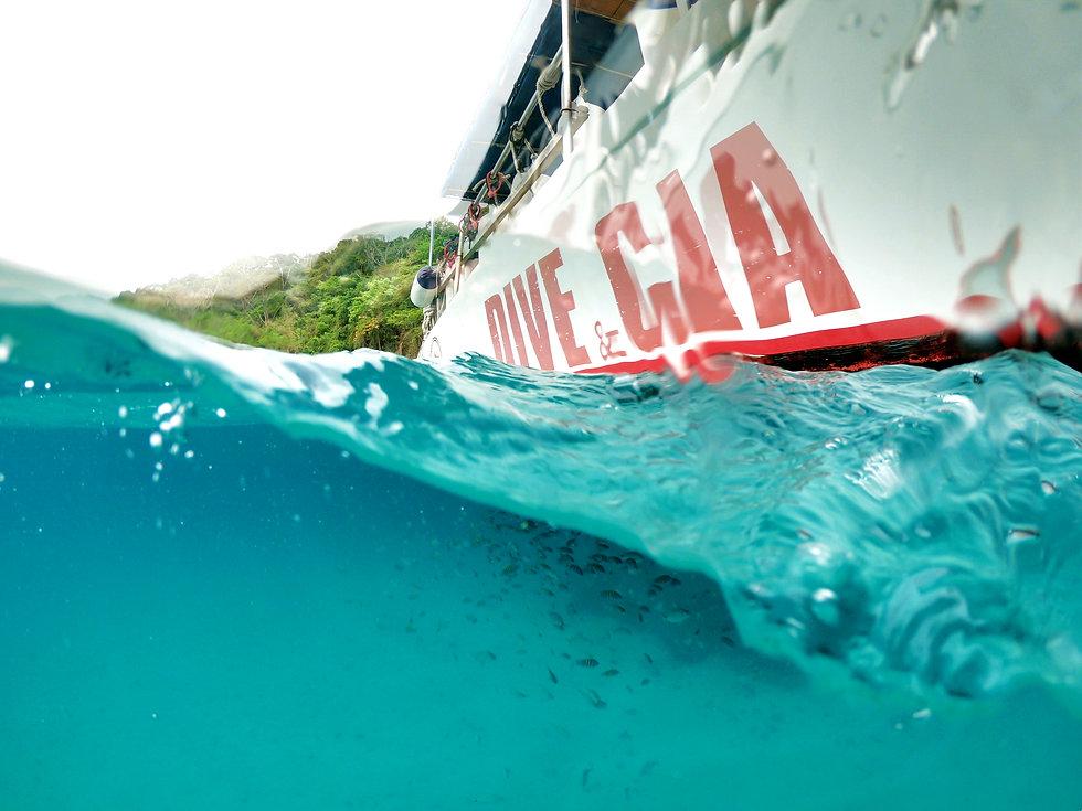 dive mergulho.jpg