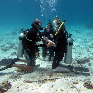 PADI-Open-Water-Diver-course-by-Namloo-D