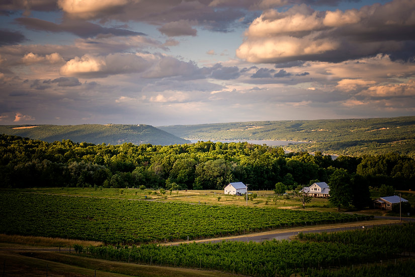 keuka lake vineyards, finger lakes overlook, finger lakes wine country,