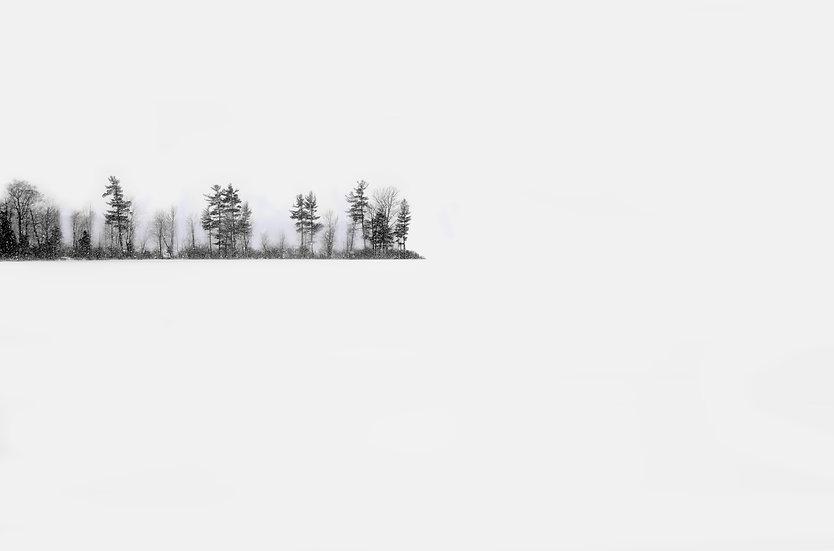 Beaver Lake- Winter