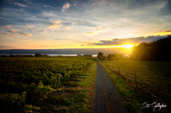 finger lakes sunrise stu gallagher-