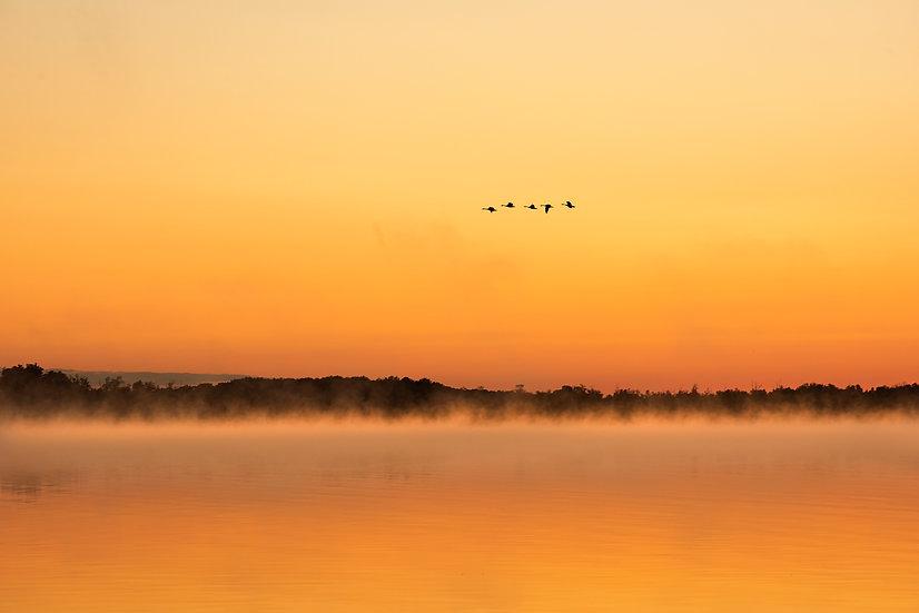 Oneida Lake Misty Morning