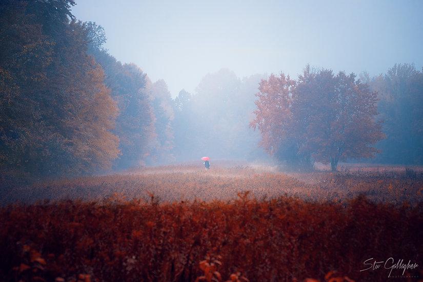 60 Road Fog