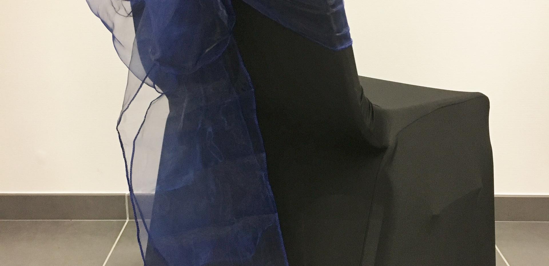 Housse Noire Noeud Bleu