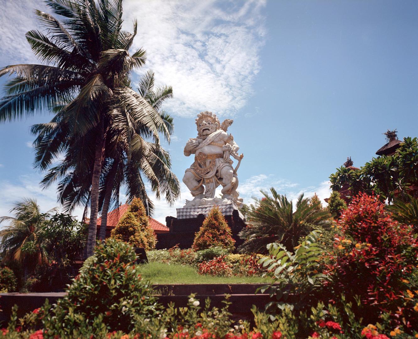 Goodman-zone-camera-shots-Bali-6.jpg