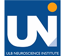 ULB Neuroscience .png