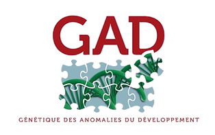 GAD.png