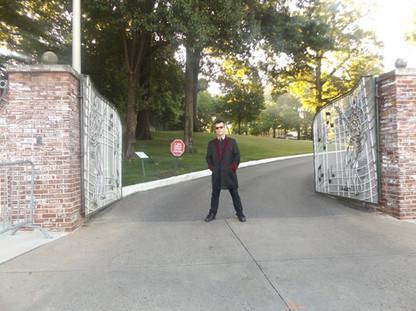 Graceland drape