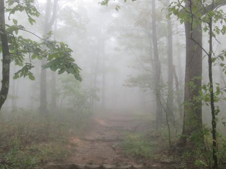 Road Tripping Around Arkansas (Part 2)