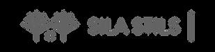 SS_horizontals_logo_transp-01.png