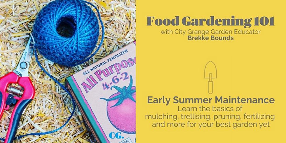 Early Summer Maintenance in Your Veggie Garden - ONLINE Class