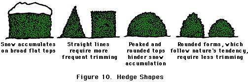 Improper and proper hedge shapes
