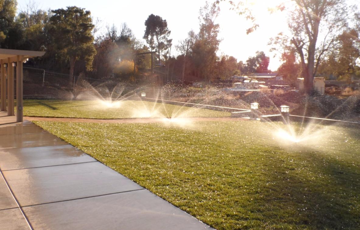 Sod & Sprinkler Install