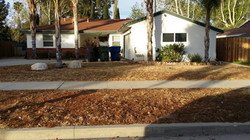 Complete Yard Renovation