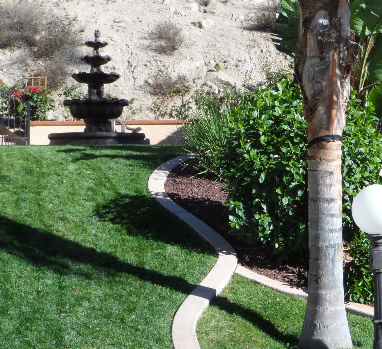 Sod and Mow Curb Install