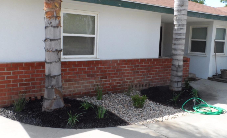 Landscape Yard Renovation