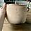 Thumbnail: Unglazed terracotta pot