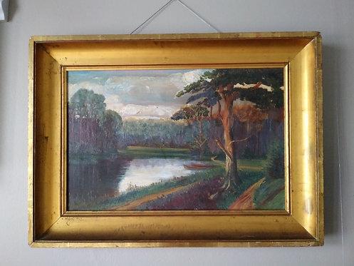 Forrest Lake Landscape.