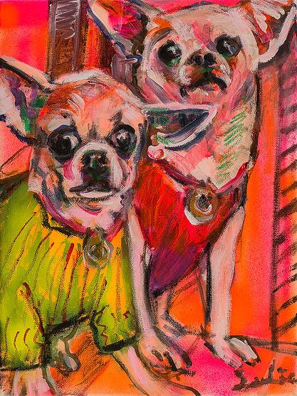 Chihuahuas.jpg