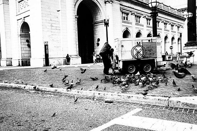 Pigeon Lady Union Station.jpg