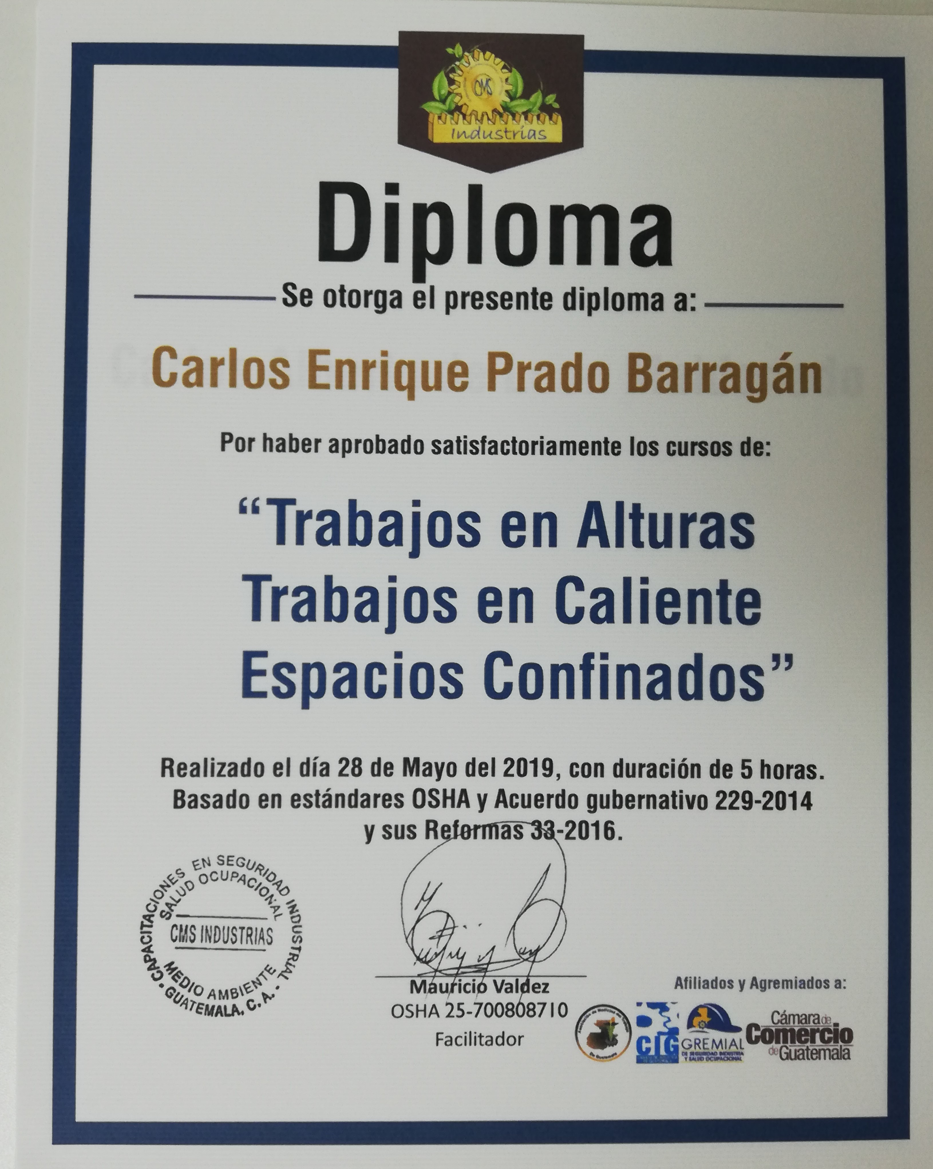 diploma .jpg
