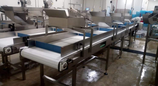 Transportador para procesos alimentarios 2
