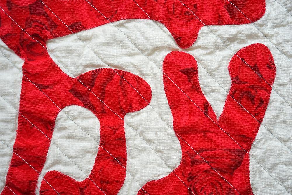 Applique Using Machine Blanket Stitches Close Up