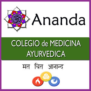 Ananda Logo Cuadrado 300.jpg