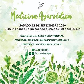 medicina ayurveda dip.jpg