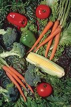 תוספי מזון צמחיים לדיאטה ולספורט של סאנריידר