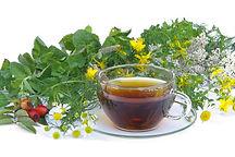 משקאות צמחיים של סאנריידר