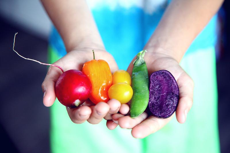 Mains tenant des fruits et légumes