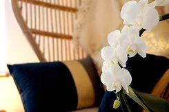 fauteuil papillon ambiance feutrée orchidée blanche