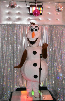 Karaoke/Disco Party Room-Olaf