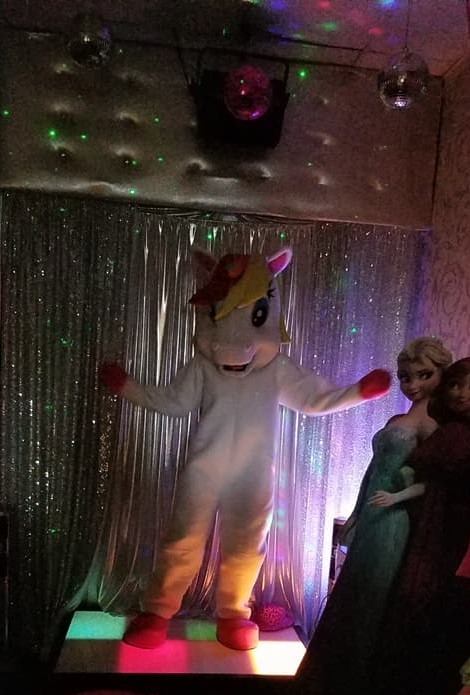 Unicorn party character