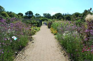 Potager Garden - RHS Rosemoor