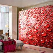 Image Print on Closet Doors