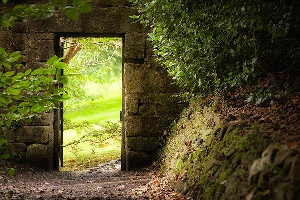 Porte forêt