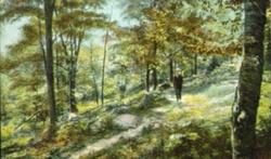 Mohegan Park