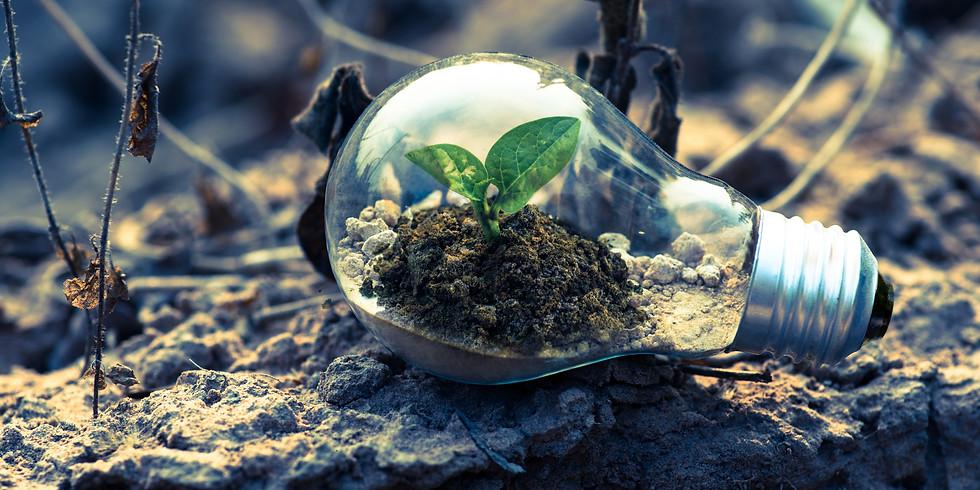 ASSOCI'ACTIF : L'environnement au cœur des ASBL