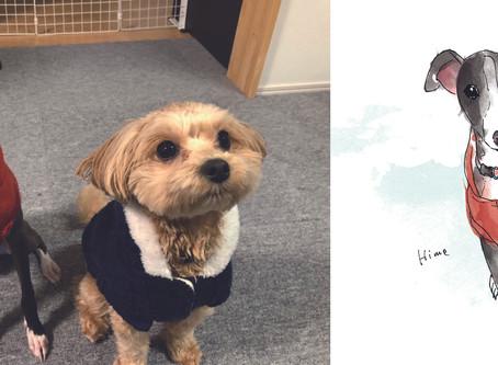 ペット(家族)のイラストをサプライズプレゼントに。【犬 イラスト 水彩画タッチ】