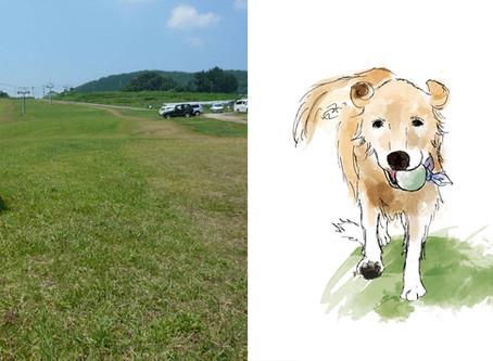 犬のイラストを描かせていただきました@遺影 イラスト 第2弾